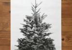 Print et juletræ