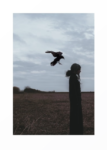 skaermbillede-2016-11-15-kl-08-59-01
