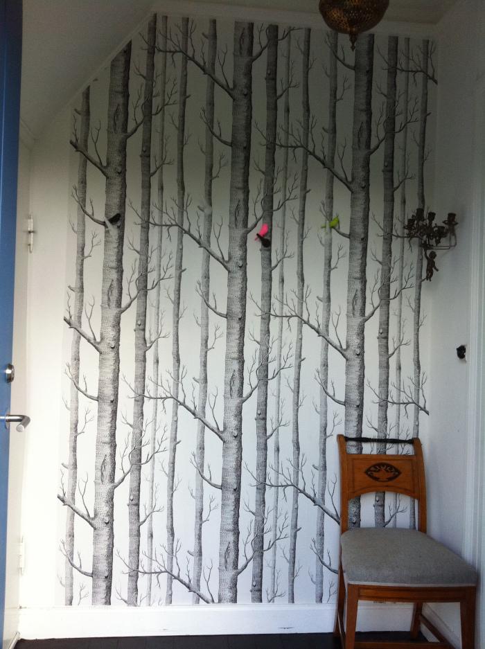 Afholte tapet-gang-grafisk-birketraeer-sort-hvid-gang-entre-hallway-bolig IM-26