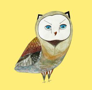 Owl – Dagens Poster