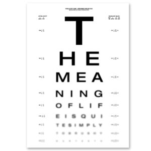 Can you see The Meaning of life? -Dagens Poster