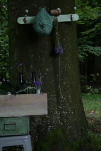 lavender-lavendet-skov-blomst-potte-trae-garden-have-summer-sommer
