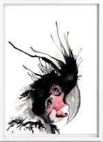 Parrot – Dagens Poster