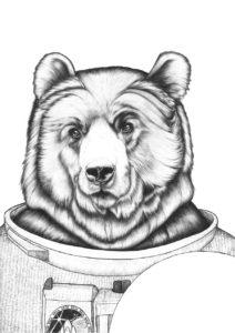 astrobjrn1_900