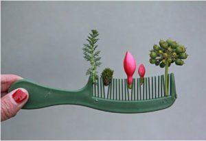 Comb Garden – Dagens Poster
