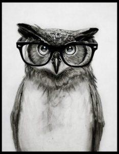 Mr. Owl – Dagens Poster
