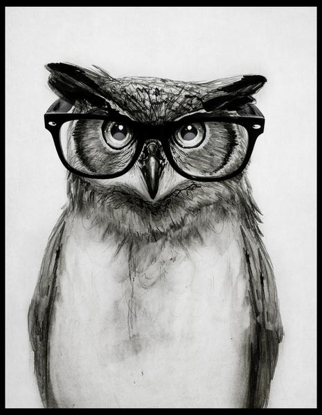 ugle-owl-indretning-poster-print-plakat