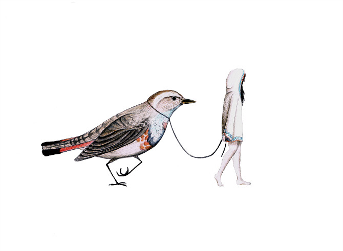 fugl-og-pige2