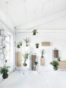 boligcious-home-decor-indretning-planter-potter-haengende-hanging-plants