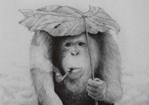 Orangutan smoking pipe – Dagens Poster