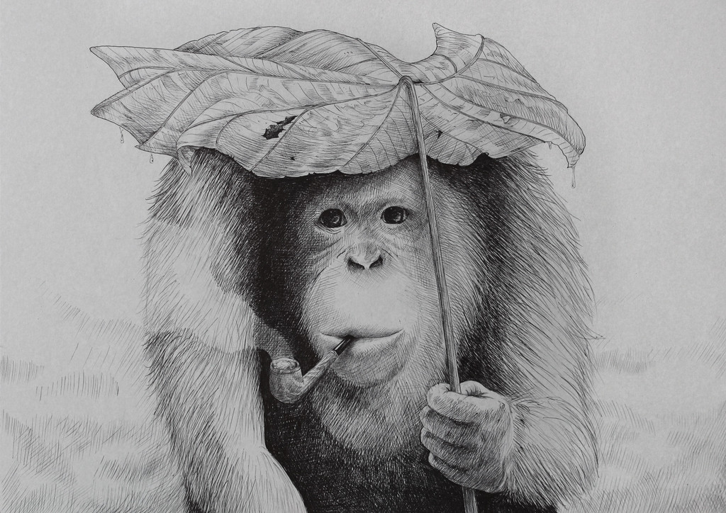 orangutan_morten_loefberg_lofberg_art_kunst_illustration_drawing