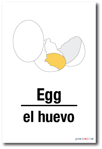 egg-poster-plakat-illustration-graphic-design