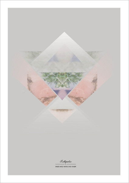 rulle_grande-art-poster-print-sidselfuglsang
