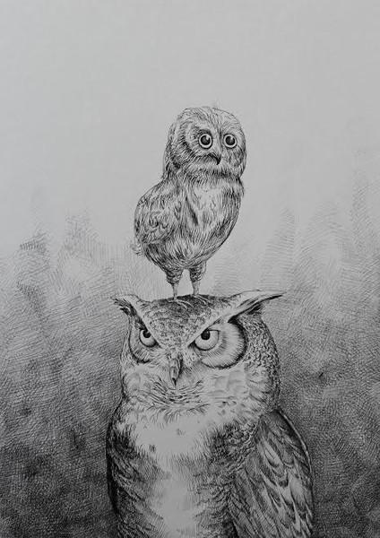 morten-loefberg-ugle-farogsoen-illustration-kunst-art-poster