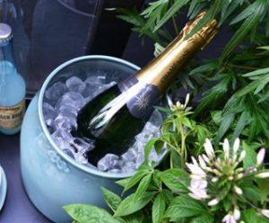 kahler-picnic-champagne