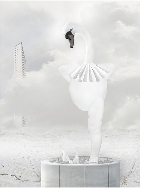i-wish-petmonkey-art-illustration-swan-plakat-kunst-poster