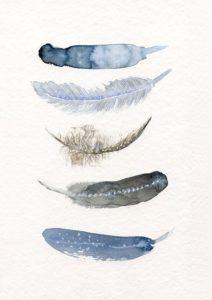 5 Blå Fjer – Dagens Poster