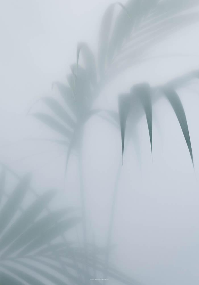 foto-botanik-70x100-presse3