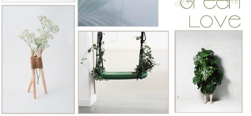green-plants-homedecor