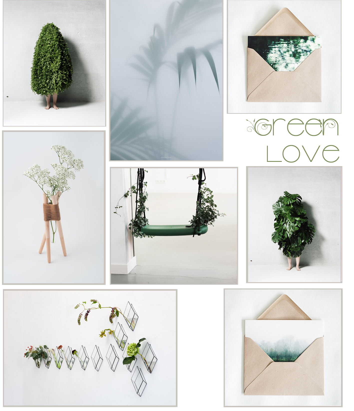 green-plants-homedecor