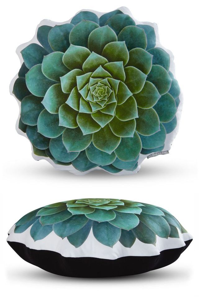 handmade-sateen-succulent-cushion-blue-echeveria
