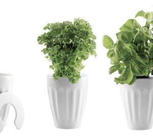 boligcious-home-decor-interior-indretning-krydderurter-urtefryd-namen-urtepotte-hvid1