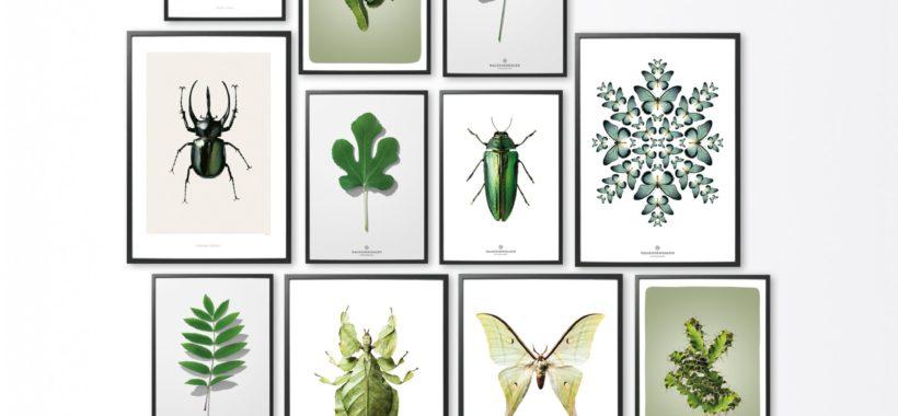 kunst-print-art-botanica-leaf-poster-plakat