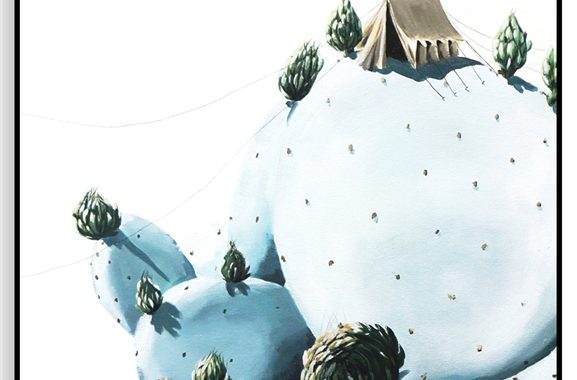 0002416_cactus_camping