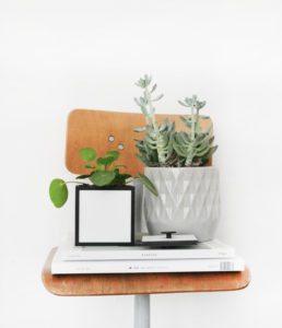 frame-botanic-bylassen