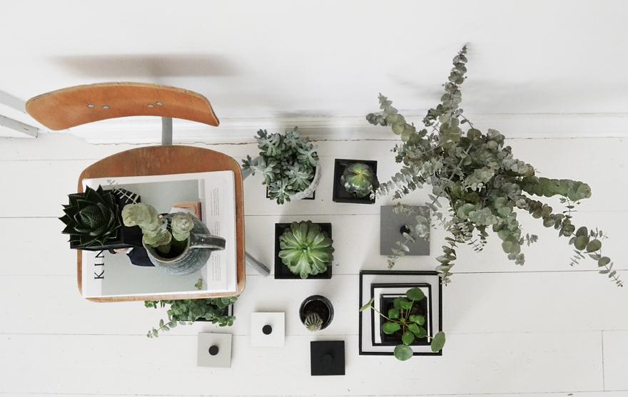 frame-bylassen