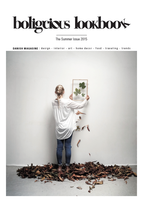 skaermbillede-2015-09-01-kl-17-48-07