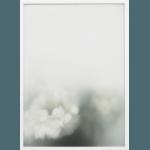 En blomst for din tanke – Dagens Poster