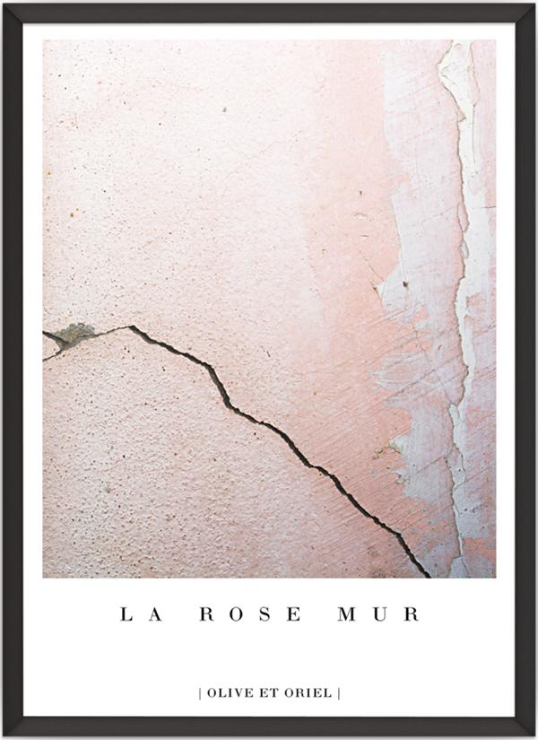 la_rose_mur2