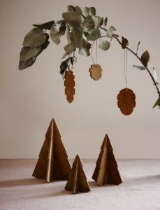 pt_1986091-cone-hanging-tree-teak-02