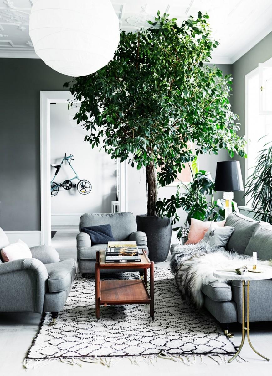 Et træ i min stue - Skal - skal ikke?