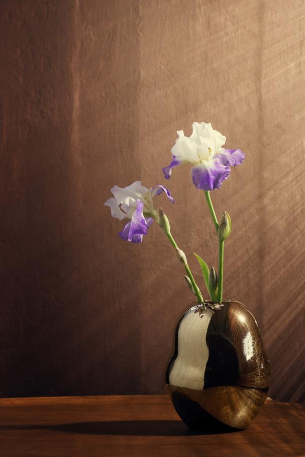 Fiora golden vase H200_LOW