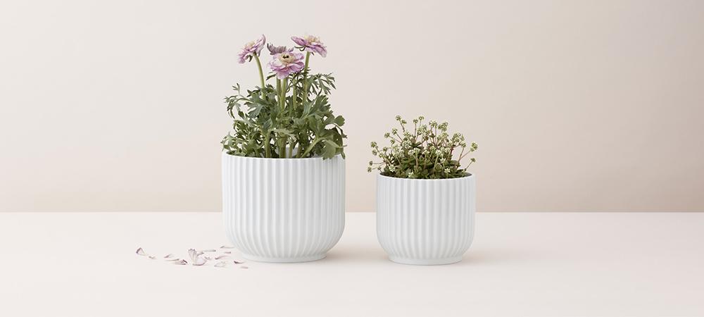 Flowerpot_1