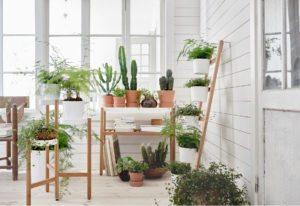 Gør plads til dine planter