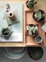 Sådan får du et hjem der oser af botanik