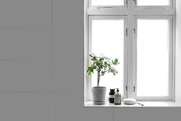 En vindueskarm på et badeværelse med et smukt fignetræ