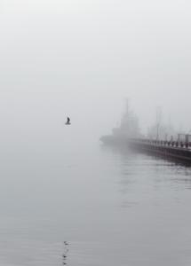 'Through The Mist' fotokunst af Maria Fynsk Norup