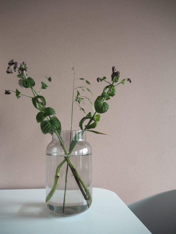 Smukt enekelt billede af en vase med to grønne grene fotograferet op af en støvet rosa væg. Delikat og smukt